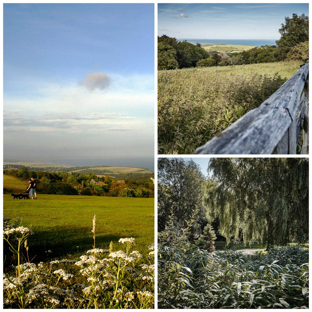 Hastings Country Park and Alexandra Park in Hastings. Images from Jonny Thompson and 1066 Country Marketing.