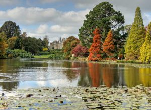 Sheffield Park, Uckfield, by Derek Winterburn