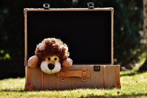 Teddy bear in a suitcase