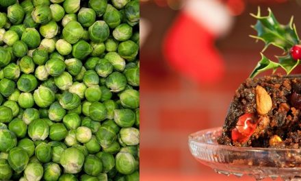 Sprouts and Christmas pud – back home in East Sussex