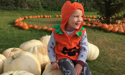 What's on this Halloween Half Term