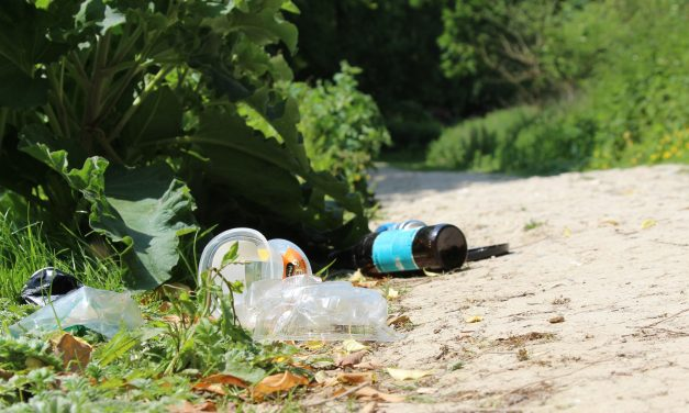 Help us keep East Sussex litter free