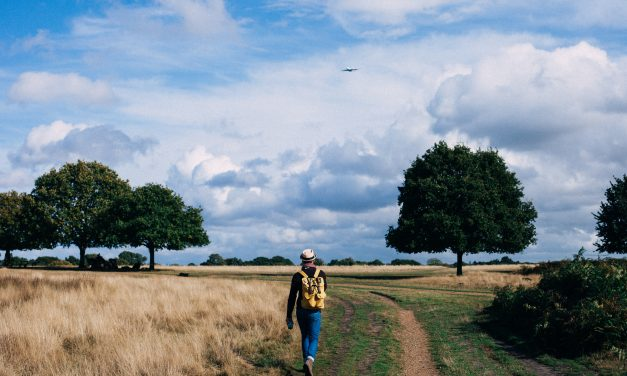 Walking your way around East Sussex.