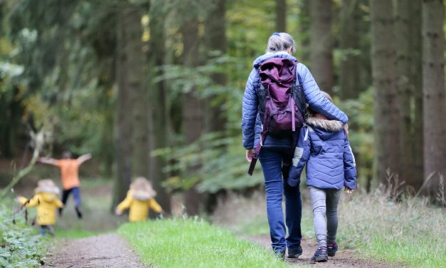 Step into September with walking festivals